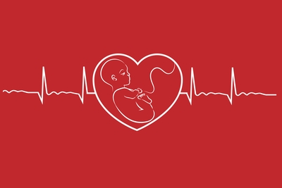 Baby on heart concept linear design vector. Heart beat graph of a pregnant woman.